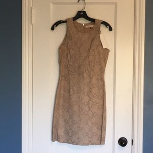 Snake it Up - Suede Mini Dress Style!